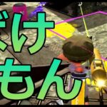 【スプラトゥーン2】リッター4kが最強っていう動画です。※コレはみてみて!【切り抜き】