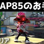 N-ZAP85(黒ザップ)のお手本【ガチエリア】【スプラトゥーン2】