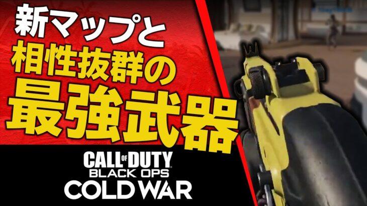 【CoD:BOCW】新マップと相性抜群の最強武器で『30連続キル』