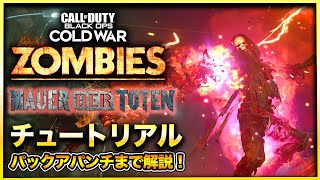 【CoD:BOCWゾンビ】新マップ「MAUER DER TOTEN」電源&パックアパンチ解放まで徹底解説! Call of Duty Black ops Cold War